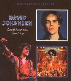 David Johansen/Live It Up