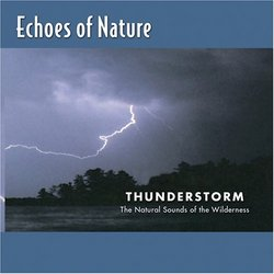 Echoes of Nature: Thunderstorm