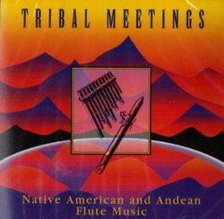 Tribal Meetings-Andean & Native Flute Music