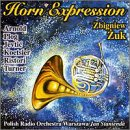 Horn Expressions