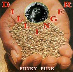Funky Punk