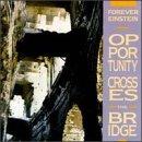 Opportunity Crosses the Bridge