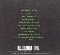 Machineries of Joy