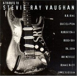 Tribute to Stevie Ray Vaughan
