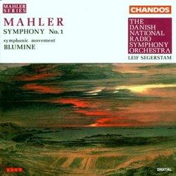 Symphony 1 / Blumine