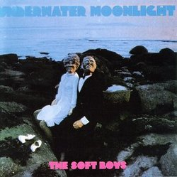 Underwater Moonlight