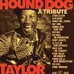 Tribute to Hound Dog Taylor