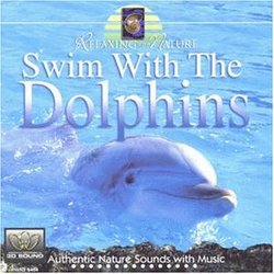 Relaxing With Nature: Swim With the Dolphins