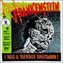 I Was a Teenage Shutdown