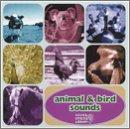 Animal & Bird Sounds