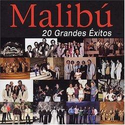 20 Grandes Exitos 1974-1984