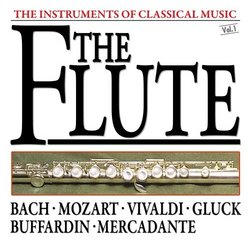 The Instruments Of Classical Music: The Flute