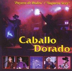 Payaso De Rodeo