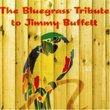Bluegrass Tribute to Jimmy Buffett
