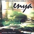 Tribute to Enya