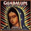 Guadalupe: Virgen De Los Indios