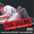 Spring Awakening (2006 Original Broadway Cast)