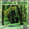 Sounds Of Nature: Rainforest