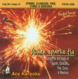 Sing The Songs Of Sparks, Clarkson, Pink, Cyrus, & Montana