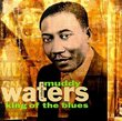 Tribute to Muddy Waters: King of Blues