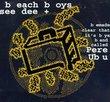 Beach Boys (CD-Rom)