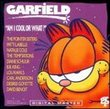 Garfield - Am I Cool or What?