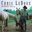 Songs of Rodeo Life