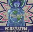 Ecosystem: Brazilian Joint