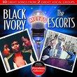 Black Ivory Meet The Escorts
