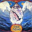 Fish Rising Box