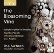 Blossoming Vine: Italian Maestri in Poland