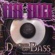 Dungeon Of Bass