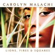Lions Fires & Squares