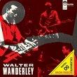 Samba No Esquema De Walter Wan