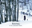 STING/ON A WINTERS NIGHT