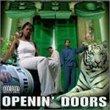 Openin Doors
