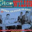 Steel Guitar Flash!Plus