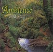 Ambience: Bird Song