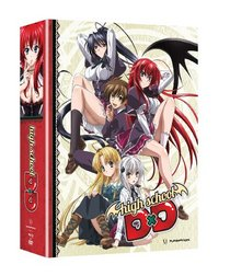 High School DxD: The Series (Limited Edition) [Blu-ray]
