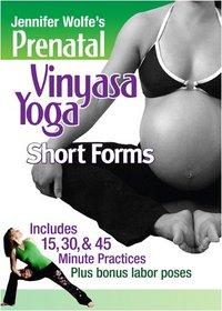 Prenatal Vinyasa Yoga ~ Short Forms with Jennifer Wolfe
