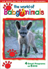 The World of Baby Animals