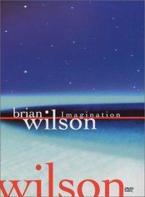 Brian Wilson - Imagination