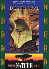 Archive Nature Series - Death Trap