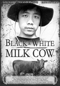 Black & White Milk Cow (Ws Dol)
