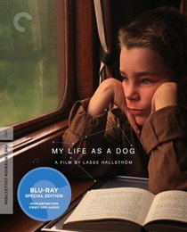 My Life as a Dog (Criterion Collection) [Blu-ray]
