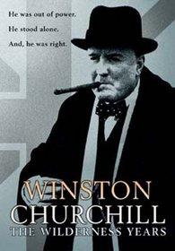 Winston Churchill - The Wilderness Years