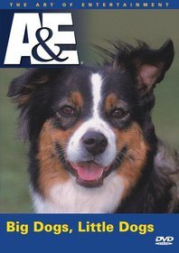 Big Dogs / Little Dogs (A&E DVD Archives)