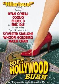 Alan Smithee Film: Burn Hollywood Burn