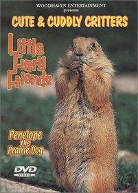 Cute & Cuddly Critters: Little Furry Friends