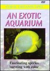 Exotic Aquarium: Coral Dreamscapes